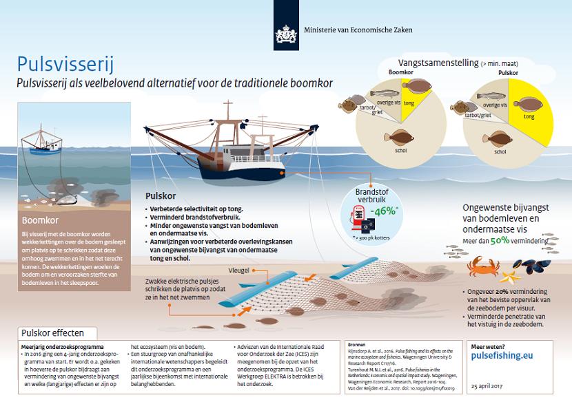 Wat is Pulskor vissen?